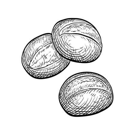 Vector illustration of buns.
