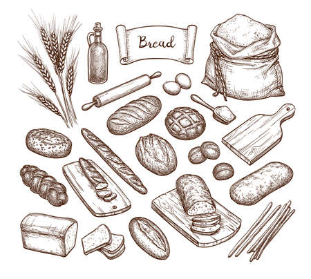 Bread and Ingredients. Illustration