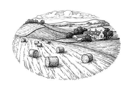 Rural landscape with hay bales.