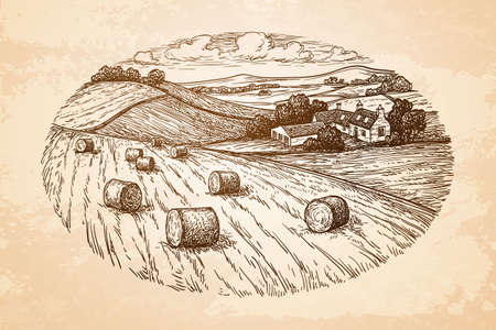 Campo con mucchi di fieno. Paesaggio di campagna Scenario rustico con villaggio. Vecchio sfondo di carta. Stile retrò. Archivio Fotografico - 76599454