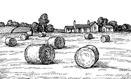Field with haystacks. Stok Fotoğraf - 77014204