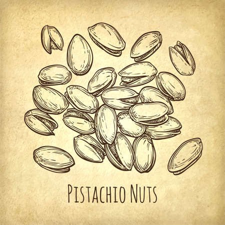 Handful of pistachio nuts. Illustration