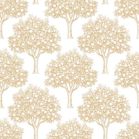 Seamless pattern with orange trees on white background. Hand drawn vector illustration. Retro style.