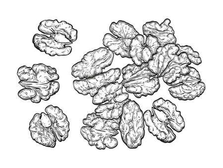 Handful of walnuts.