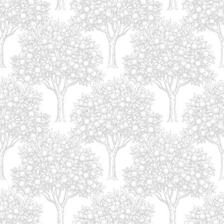 Seamless pattern con alberi di arancio Archivio Fotografico - 78147706