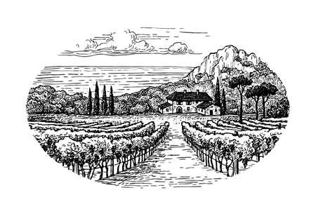 田舎の風景。海沿いのブドウ畑。手描きの農村風景です。ビンテージ スタイルのベクトル図です。
