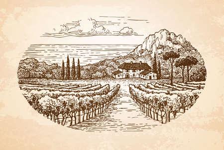手は、古い紙の背景に農村風景を描いた。田舎の風景。海沿いのブドウ畑。ビンテージ スタイルのベクトル図です。  イラスト・ベクター素材