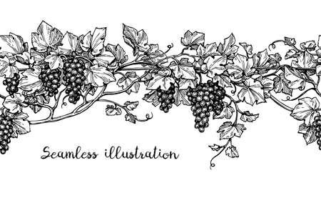 ブドウのシームレスなイラスト。手描きの背景のスケッチ。  イラスト・ベクター素材