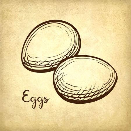 Vector illustration of eggs