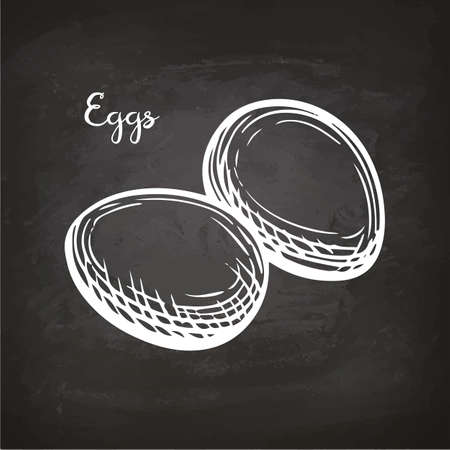 Eggs. Retro style sketch on chalkboard. Hand drawn vector illustration.