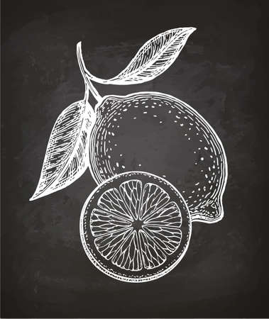 Lemon. Sketch with chalk on blackboard background. Hand drawn vector illustration. Retro style.