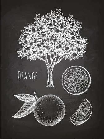 オレンジ色のチョーク スケッチ