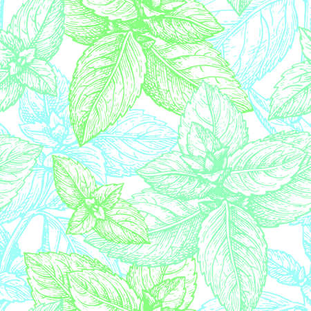 Mint pattern illustration.