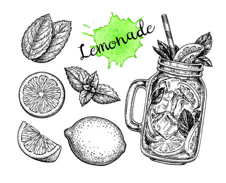 Lemonade and ingredients. Retro style ink sketch isolated on white background. Hand drawn vector illustration.