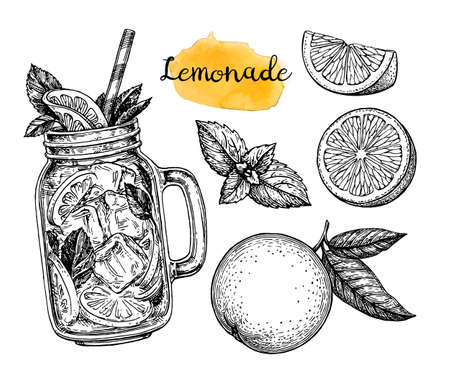 Orange lemonade and ingredients. Retro style ink sketch isolated on white background. Hand drawn vector illustration. Retro style ink sketch. Vettoriali