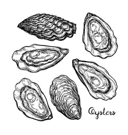 Esquisse d'encre d'huîtres. Banque d'images - 84356819