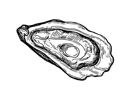 Bosquejo de la tinta de la ostra. Foto de archivo - 84356820