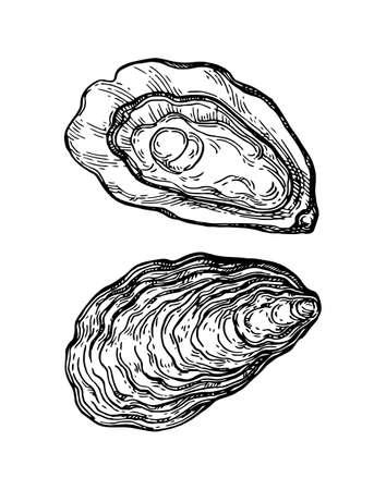 Dibujo de tinta de ostras