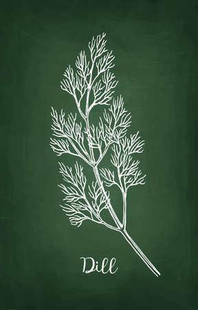 Chalk sketch of dill on blackboard Ilustracja