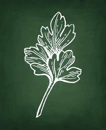 手描き、レトロなスタイルの図にパセリのチョーク スケッチ。