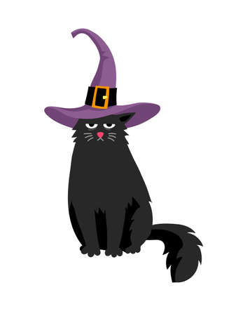 Cute black cat in halloween hat.
