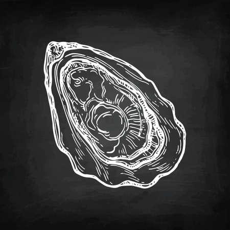 Croquis de craie d'huître. Banque d'images - 87113876