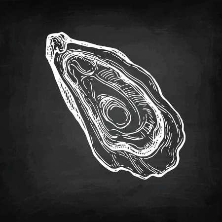 Oyster chalk sketch.