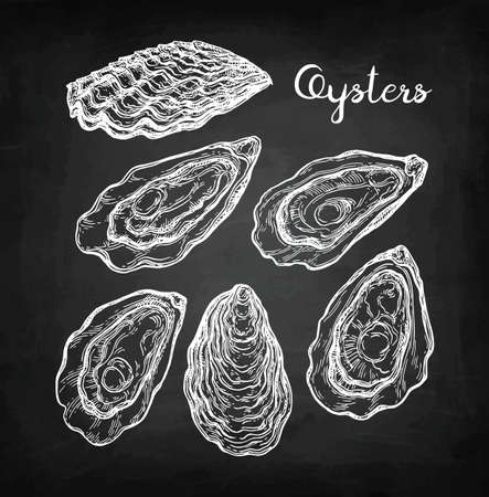 Croquis de craie d'huîtres. Banque d'images - 87113884