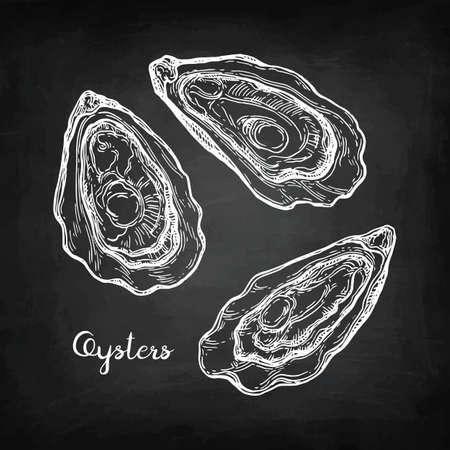 Croquis de craie d'huîtres. Banque d'images - 87113885