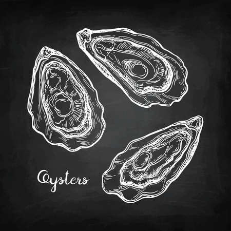 Oysters chalk sketch.