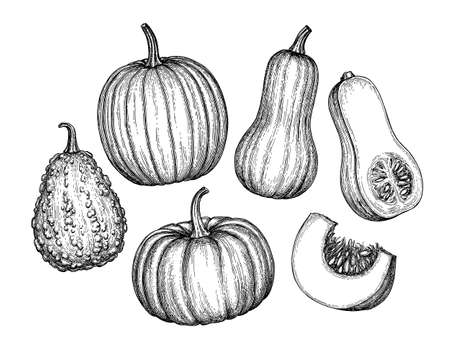 Set of pumpkins