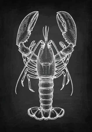 Kreda szkic homara Ilustracje wektorowe