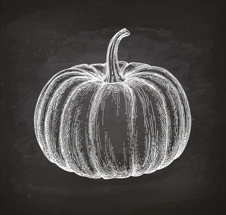 Chalk sketch of pumpkin Çizim