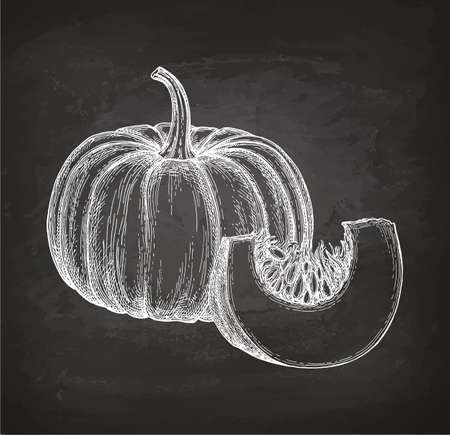 Chalk sketch of pumpkin Ilustrace