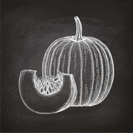 Chalk sketch of pumpkin Ilustrace