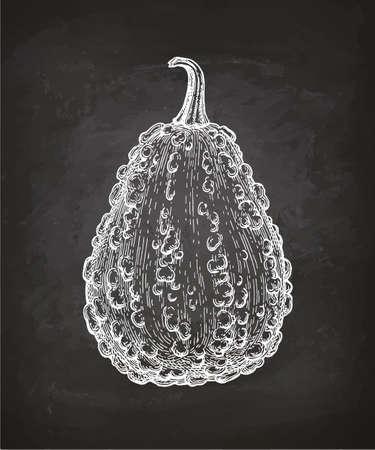 Chalk sketch of gourd