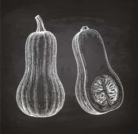 Chalk sketch of butternut squash Çizim