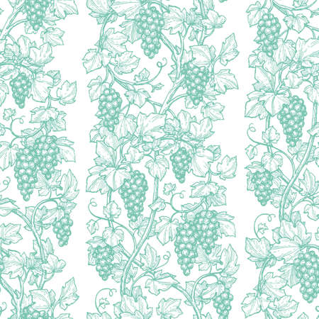 Pattern with grape Hand drawn Retro style