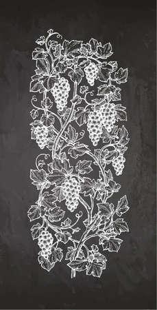 Hand drawn vector illustration of vertical grape yard. Chalk sketch on blackboard background. 向量圖像