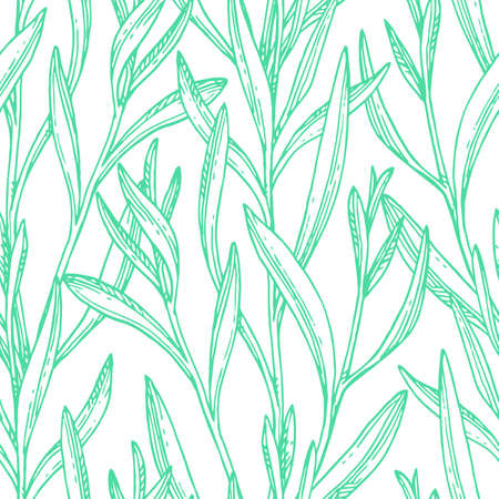 Seamless pattern with tarragon.