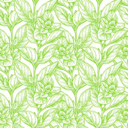 Seamless pattern with oregano.