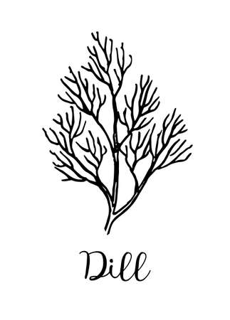 Dille inktschets. Stock Illustratie