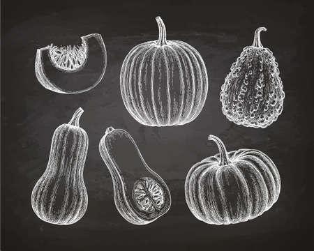 Set of vegetables icon. Illustration