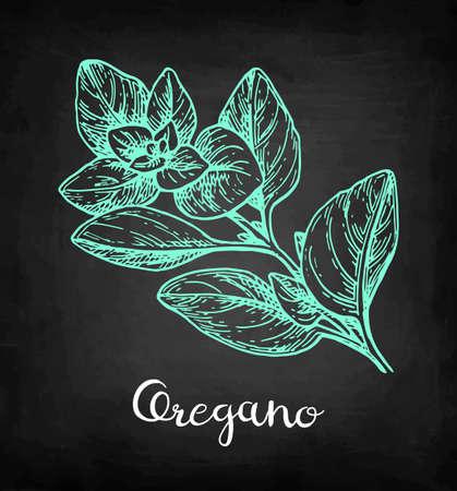 オレガノ。黒板の背景にチョークスケッチ。●手描きベクトルイラスト。レトロなスタイル。