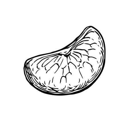 Stukje van mandarijn. Inkt schets geïsoleerd op een witte achtergrond.