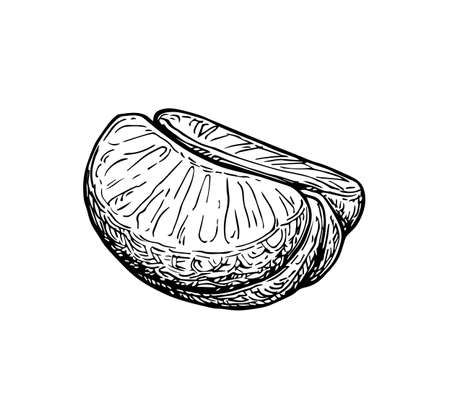 Half of tangerine without peel. Ink sketch isolated on white background. Hand drawn vector illustration. Retro style.