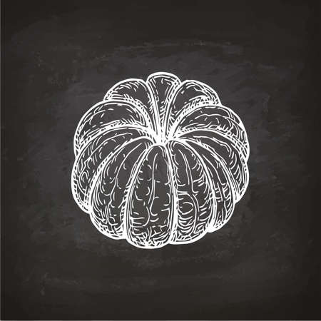 Ink sketch of mandarin orange without peel. Chalk sketch on blackboard background. Hand drawn vector illustration. Retro style. Ilustração