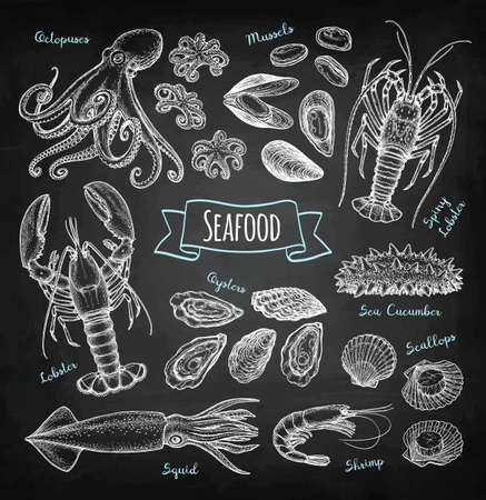 Seafood chalk sketch 向量圖像