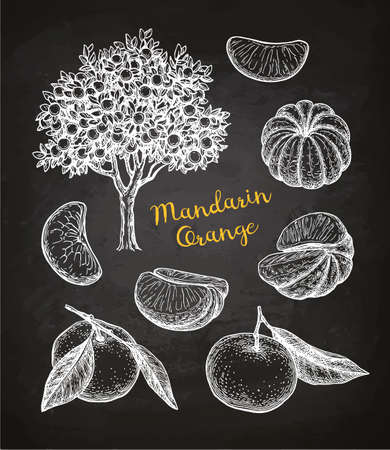 Conjunto de mandarina. Foto de archivo - 96741672