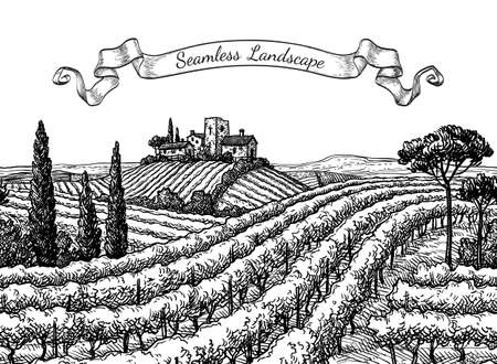 Vineyard seamless landscape. Ink sketch isolated on white background. Hand drawn vector illustration.